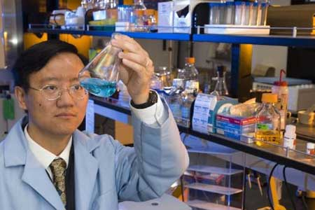 hasil uji lab tomo hydrogen